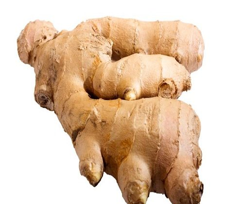 ginger washing plant