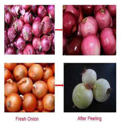 Onion Peeler machine video