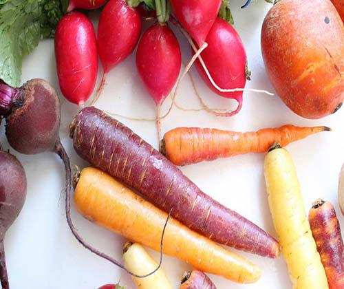 root vegetable peeling machine video